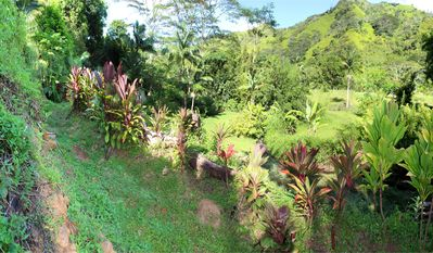 Ancient Hawaiian stone irrigation ditch crosses the hillside property