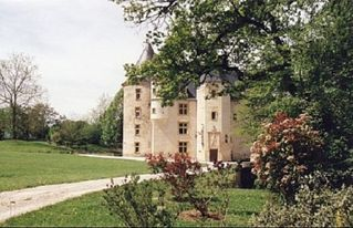 Saint-Martory castle photo - Arriving at the château from the village