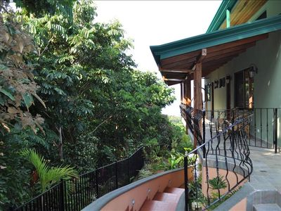 Side veranda overlooking jungle wildlife