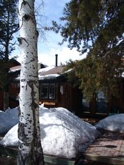 Steamboat Springs townhome photo - Herbage Mountainside Townhome-Winter/spring
