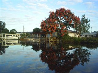 Tavares house photo - From the canal, Chinese rain tree in its red bloom.