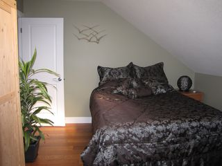 Shuswap Lake townhome photo - loft bedroom with luxury queen mattress and skylight