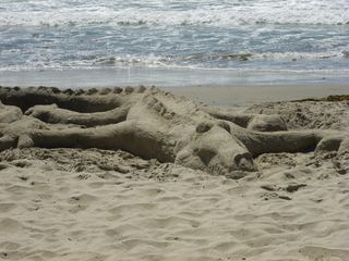 Solana Beach condo photo - Sand dragon at Solana Beach!