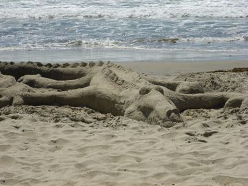 Sand dragon at Solana Beach!
