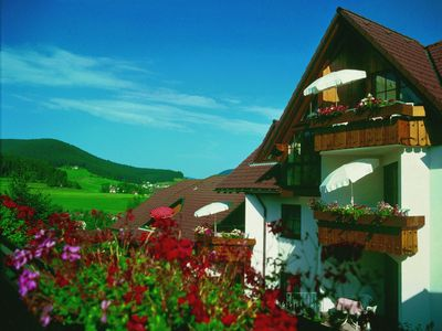 'Golden Rooster' in the heart of the Black Forest