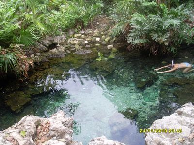 The cenote in the neighborhood. Crystal clear