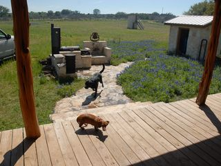 Mason lodge photo - Bar B que cooking area during Spring Flower Season. Pets are allowed ask