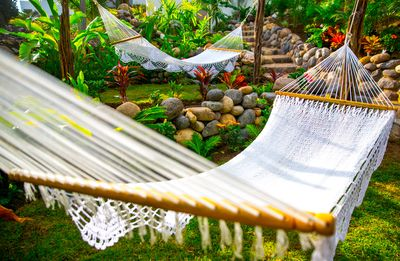 Relax in our hammocks