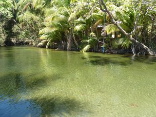 Montezuma house photo - mouth of nearby lagoon