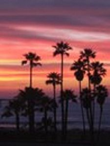 Feel your pulse drop as you take in one-of-a-kind Ocean Beach sunsets....