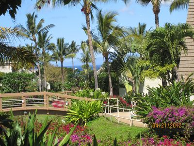 view from outer lanai and lawn