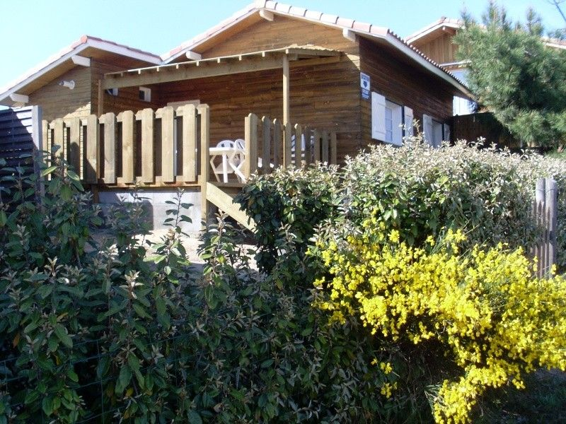 House 55 square meters, close to the sea