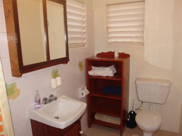 Adjoining bathroom of main bedroom