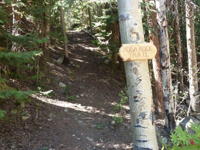 Your own lush & private 1/2 mile hiking trail - for Cabin guests only!