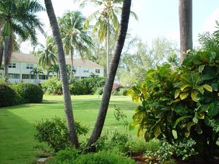 Grand Cayman condo photo - Tropical garden is an outdoor playroom