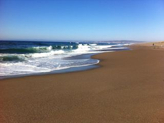 Marshall house photo - Pt. Reyes has 10 miles of pristine seashore- swim, explore, picnic, relax