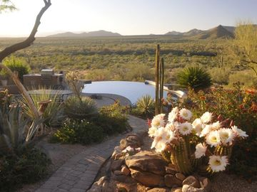 Cave Creek house rental - This view is all yours as you step out of your back door