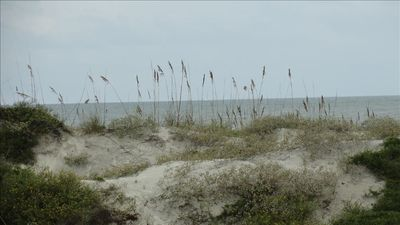Colony Reef sand dunes