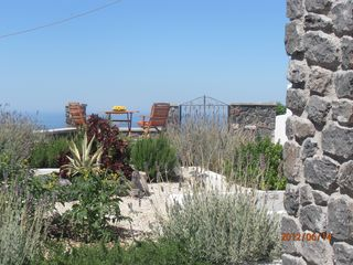 Thira (Fira) villa photo - The garden. Rosemary,lavender,marjoram,basil, thyme. Smell and taste.