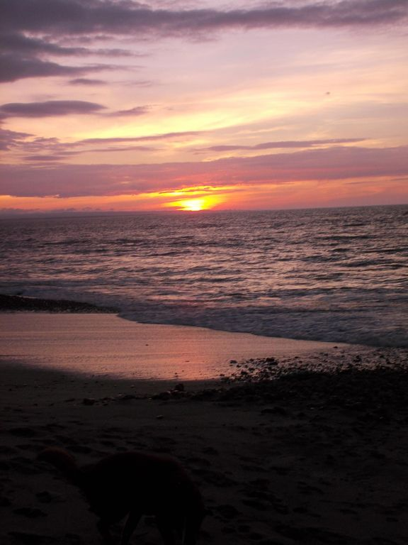 Oceanfront Condo, Gorgeous Sunsets
