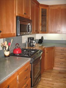Exceptionally well equiped kitchen - Artsy cement counter tops