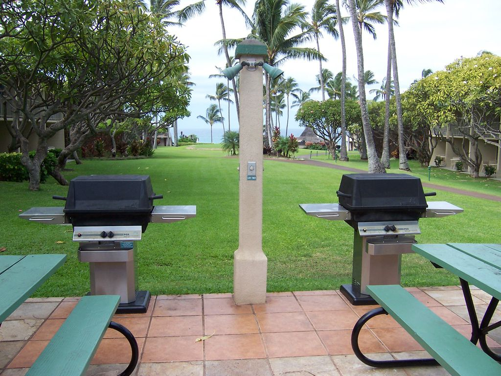 Upper barbecue grills.  Great place to gather at night.