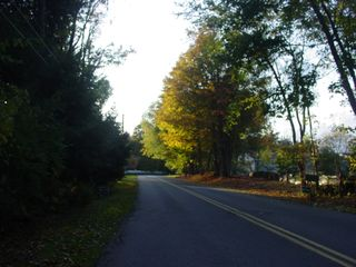 Great Barrington cottage photo - A Quiet Tree Lined Street