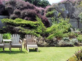 Mendocino house photo - privategarden