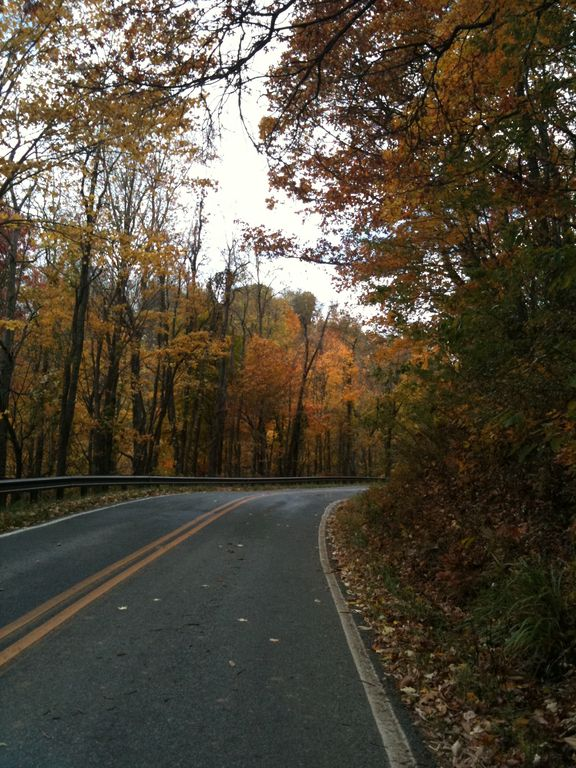 Shulls Mill Road leads from Hound Ears to the Blue Ridge parkway-Beautiful!!