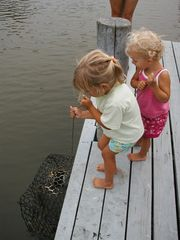 Chincoteague Island house photo - Your never too young to go crabbing from Chincoteague's PonyIsland private dock!