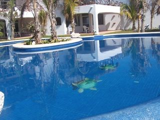 Akumal condo photo - Our Beautiful Pool is half wading, half swimming