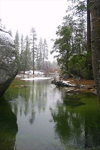 Yosemite National Park - 20 Minutes from Bass Lake