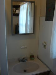 Alpena cottage photo - bathroom