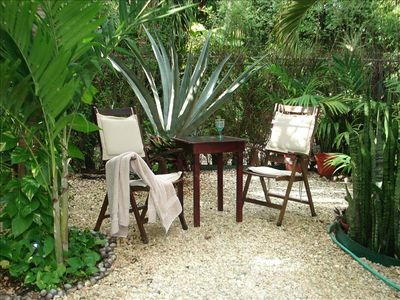 Beautiful tropical garden very quiet