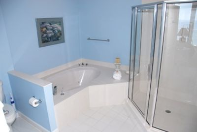 Master Bath - walk-in Shower and Jacuzzi Tub
