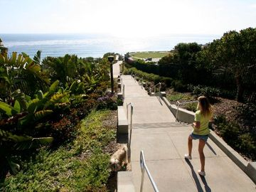 Or take the walking path right down to the sand!