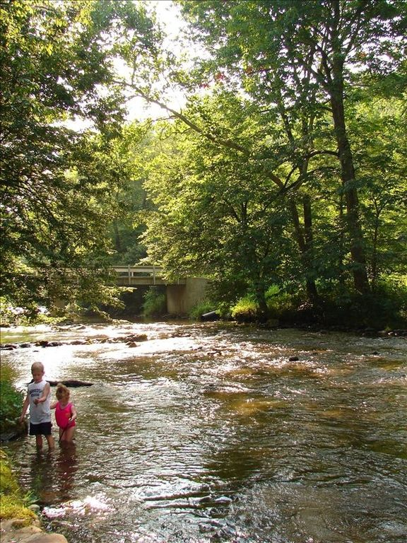 Log cabin on trout stream river 3 acres vrbo for Fishing cabins in tennessee