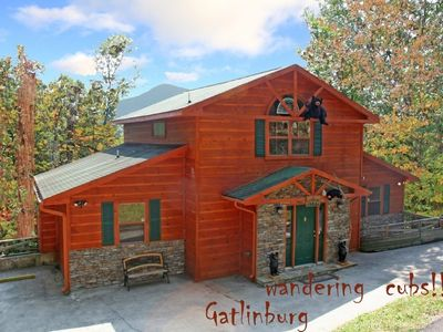 Wandering Cubs, Gatlinburg next to Smoky National Park and   Pigeon Forge and
