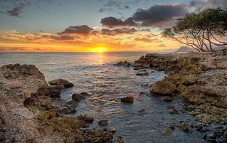 Ko Olina condo photo - Ko Olina Tide Pools, the perfect place for watching sunsets (and sea turtles!)