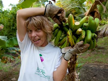 Your host, Leslie, harvests bananas from the garden.