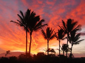 Waikoloa Beach Resort villa rental - Sunrise from the bedroom window in villa 8A. You must see the oceanview!