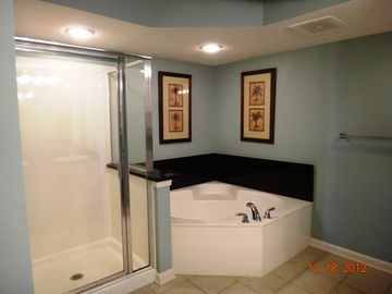 Master Bathroom jetted tub and over-sized shower