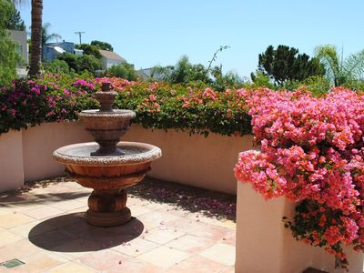 Bubbling Fountain and Wall of Cascading Bouganvillea greet you at the front door