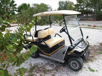 4-person golf cart rental available.