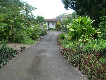 Captain Cook house rental - Welcome to Hale Honu - our Big Island vacation rental, Hawaii