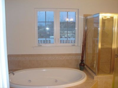 Master Bath with jacuzzi tub and view of wetlands
