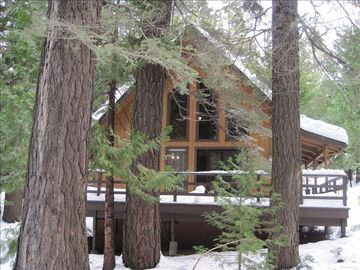 Dorrington cabin rental - Paradise Porch!