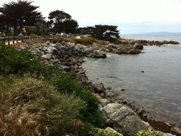 Pacific Grove house rental - Beach straight down from house, looking south