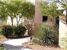 Tucson Condo Rental Picture