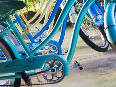 We have a fleet of Trek beach cruisers to ride on the nearby bike path.